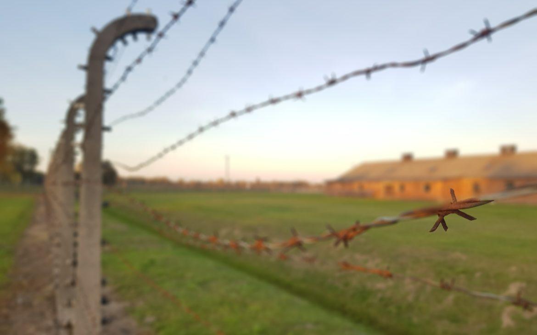Auschwitz con bambini - Alla Palma Azzurra