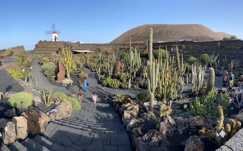 Lanzarote - Jardin de Cactus - Alla Palma Azzurra